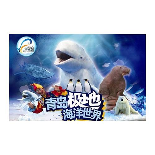 露天欢乐剧场表演 极地馆 极地动物表演!观看神奇的海
