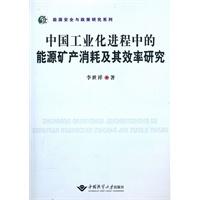 中国工业化进程中的能源矿产消耗