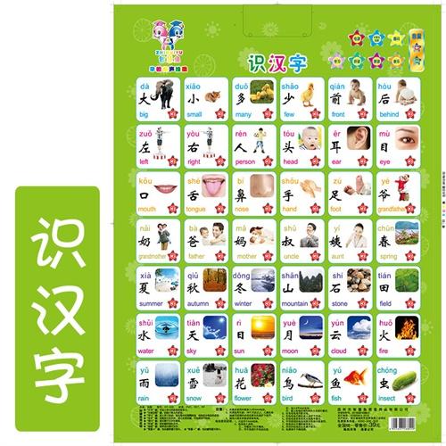 早教挂图有声娃娃凹凸全套儿童玩具电池婴幼早教宝宝看图识字卡送书籍炝语音菜图片