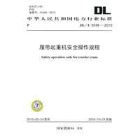DL/T5248