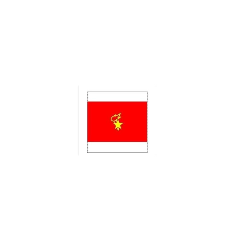 印少先队队旗 大队旗 国旗 90*120