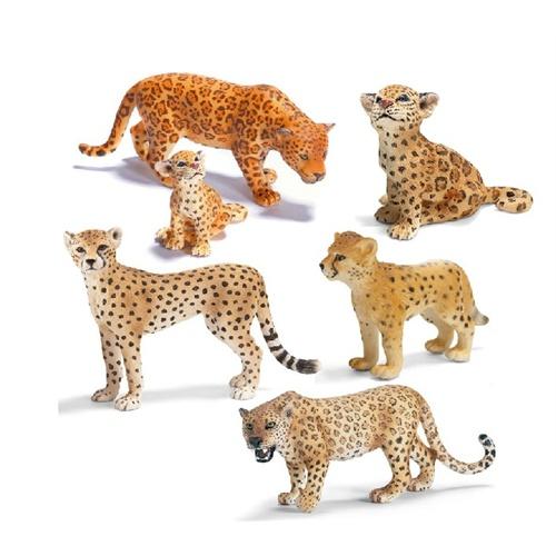动物模型 猎豹 美洲豹