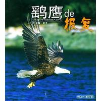 鹞鹰de报复――人与自然丛书
