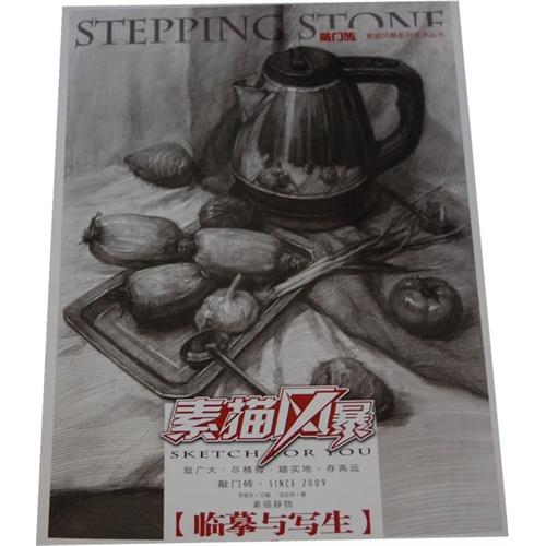 10 数量:-  素描风暴——素描静物 临摹与写生 钻石vip价:¥33.