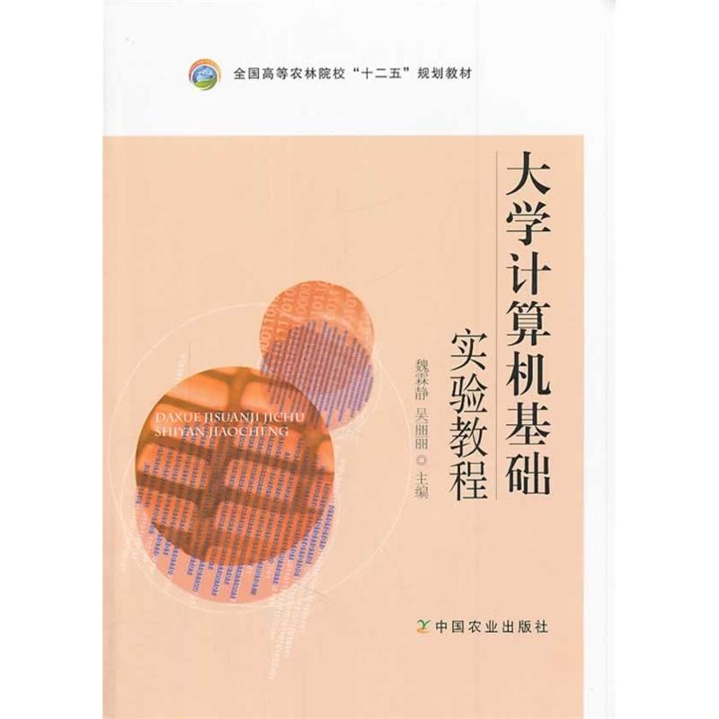 大学计算机基础实验教程(魏霖静,吴丽丽)