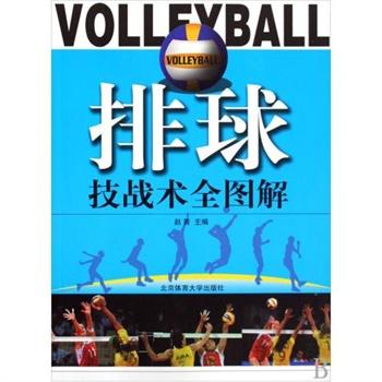 《排球技战术全图解 赵青
