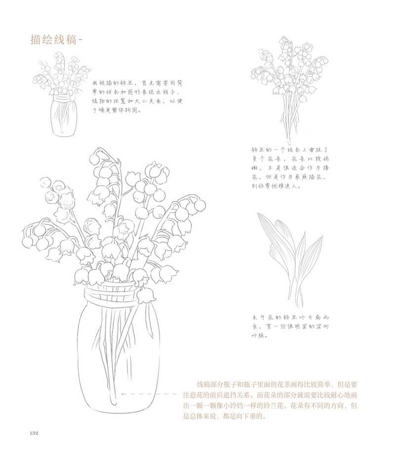 艺术 绘画 色铅笔画 水利水电出版社色铅笔画 【rt7】植物绘2 飞乐鸟图片