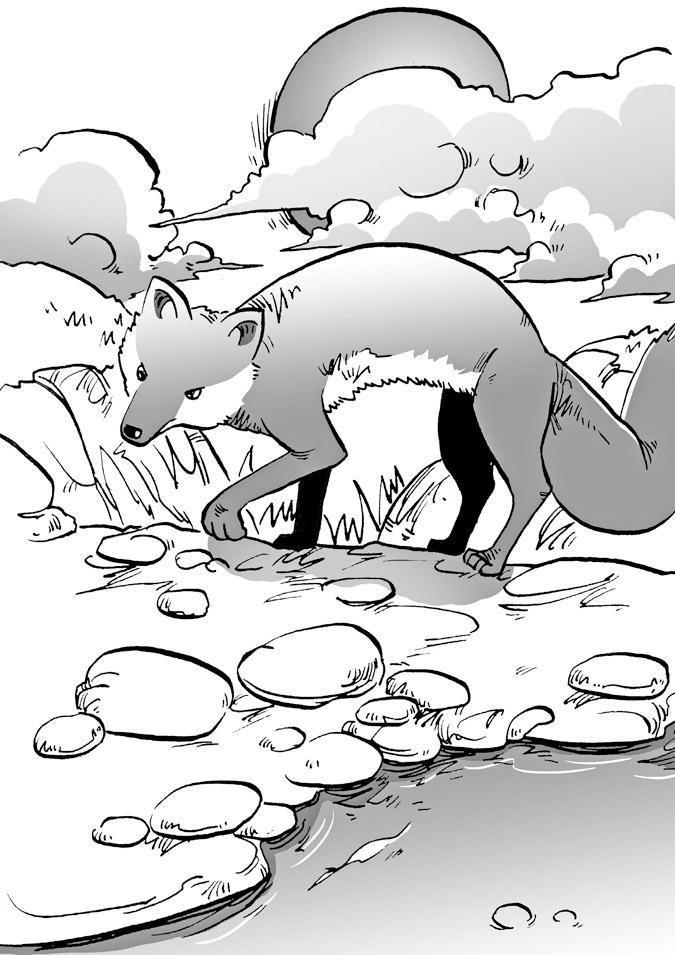 西顿野生动物故事集 小学版