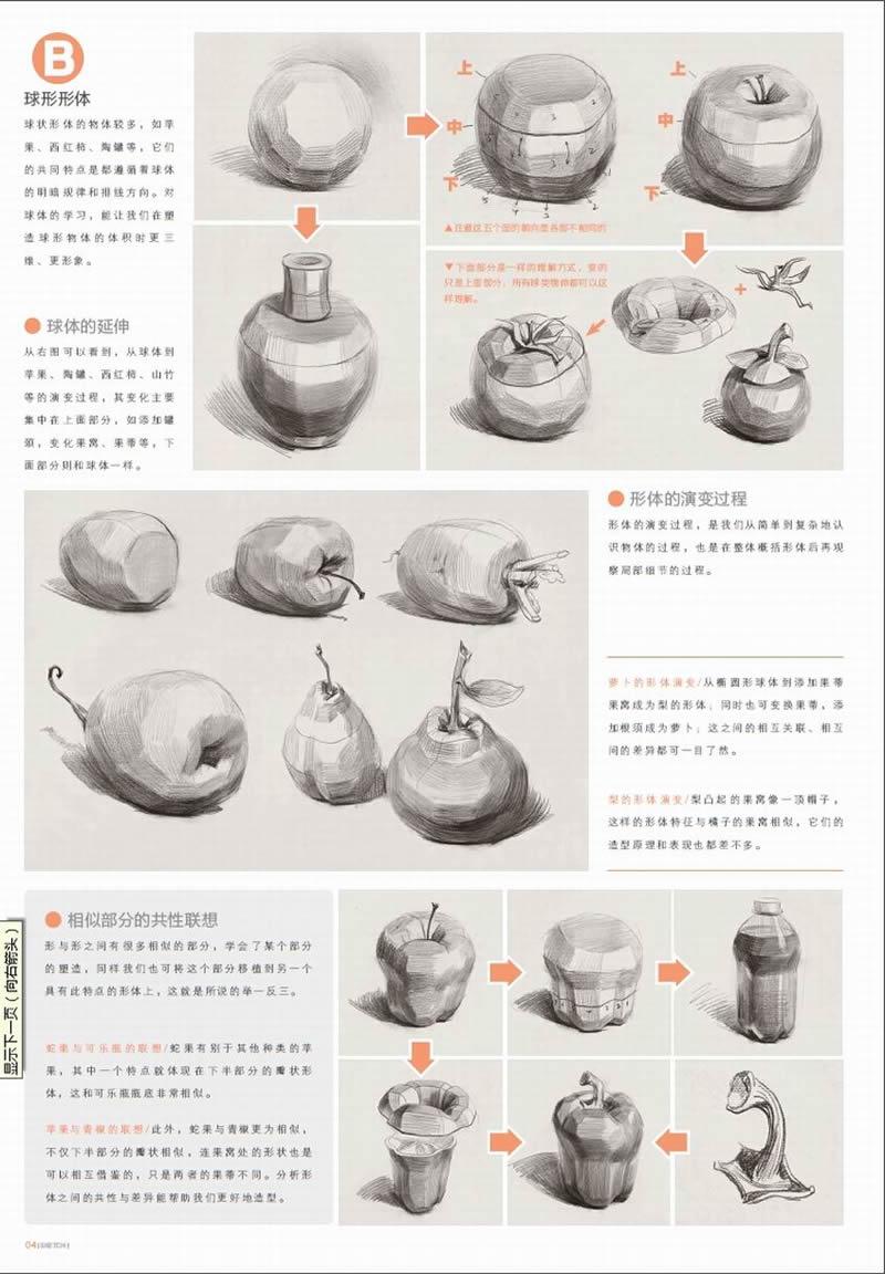 素描果蔬类步骤图