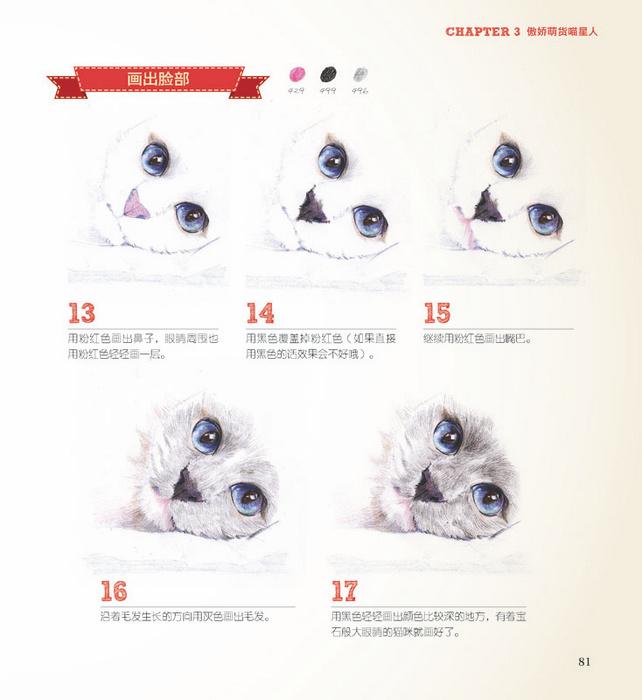 动物世界的色铅笔手绘之旅 张洁著 9787115365125 人民邮电出版社