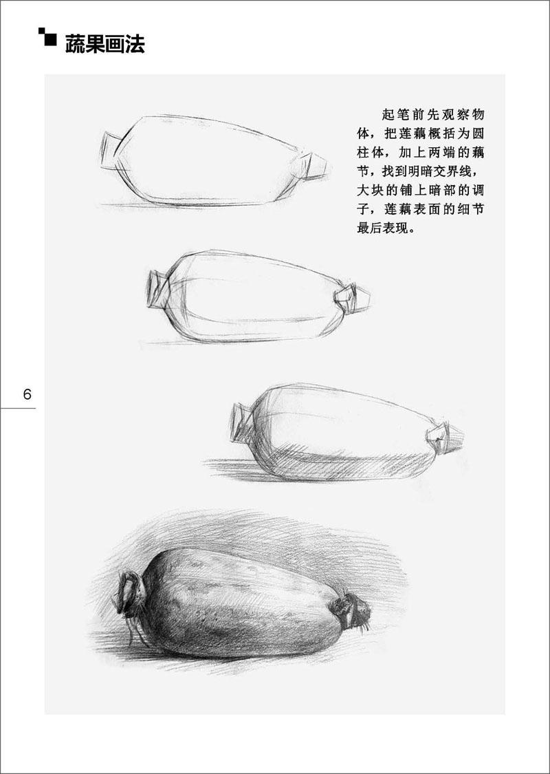 《美术基础教程-素描静物图片