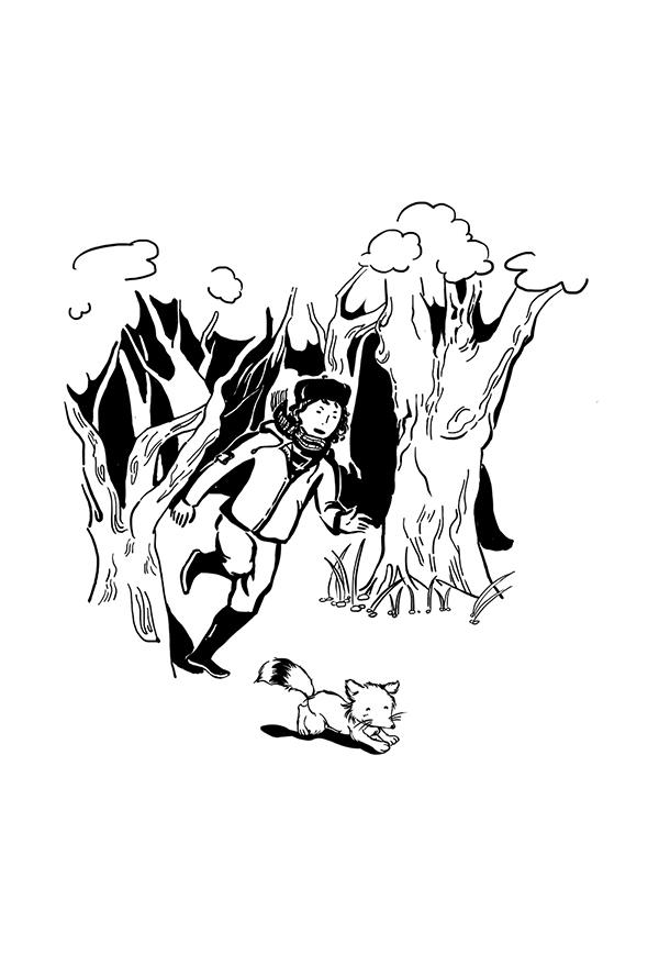 虎黑白手绘插画