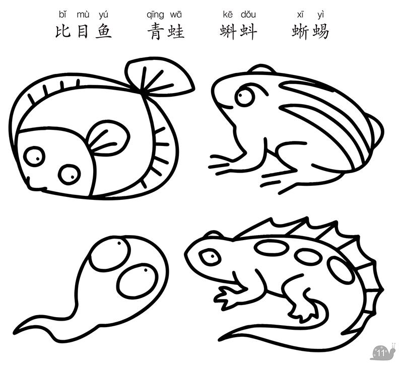 爱德少儿 儿童蒙纸学画动物