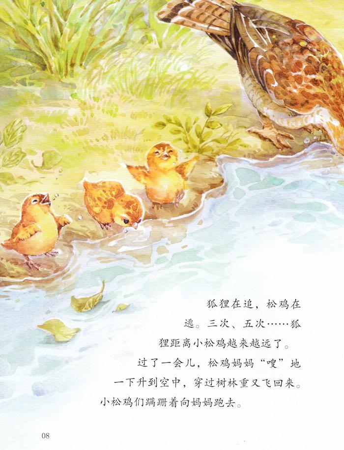 绘本西顿动物故事(全8册)