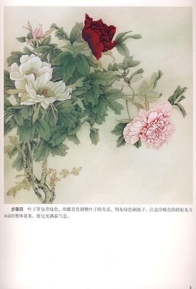 《牡丹荷花芙蓉茶花画法》(张树荣.)【简介