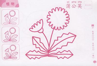 少儿 幼儿启蒙 美术/书法 儿童蒙纸描画大全(上)       目录     动物
