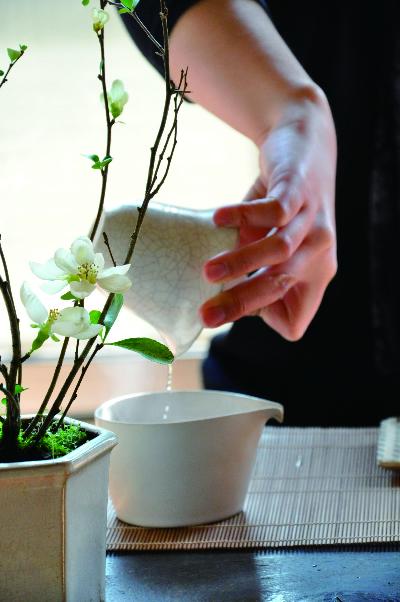 梅花树下看书喝茶图