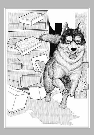动物受伤插画手绘