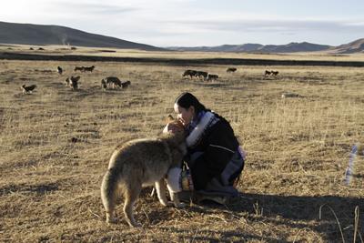 """鹿子……""""我把我能想到的,作为狼的食物的野生食草动物名字问了个遍."""