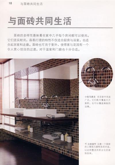 《室内设计师专用面砖搭配手册》(英)布莱特