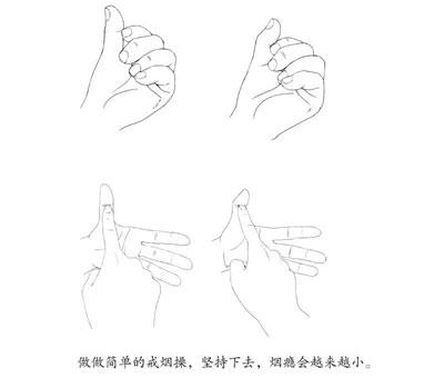 编辑推荐 袁方老师手把手地教你使用足部反射区,治疗颈椎痛,腰肌劳损